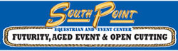 Southpoint logo and link